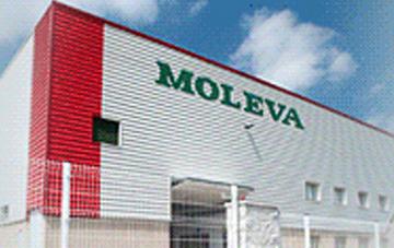 MOLEVA – GRUPO DALLANT