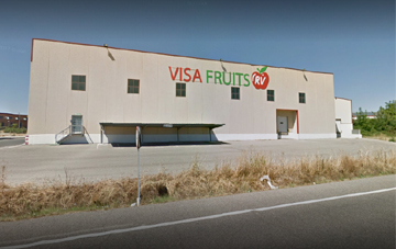 VISA FRUITS