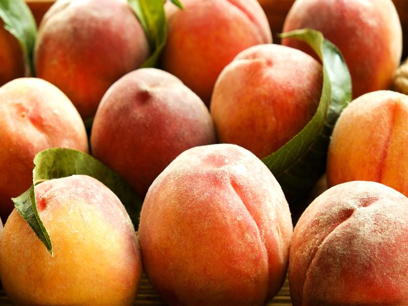 ilerfred-sectores-fruta-verdura-12