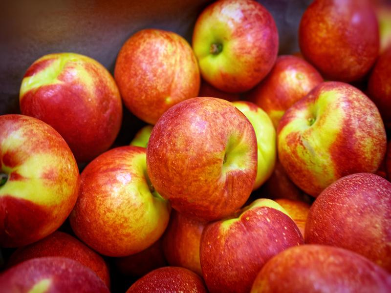 ilerfred-sectores-fruta-verdura-13