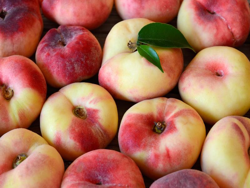 ilerfred-sectores-fruta-verdura-14