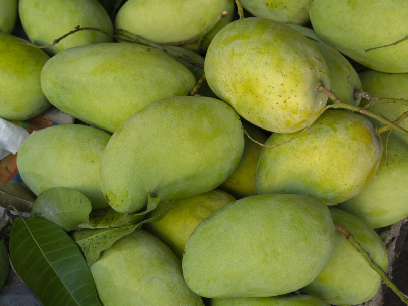 ilerfred-sectores-fruta-verdura-19