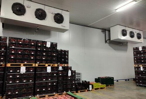 CDTI concede un proyecto de I+D+i a Industrial Leridana del Frío SL para la mejora de la conservación de la fruta